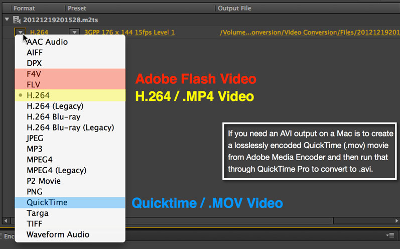 If you're looking for a format that will work on just about anything, choose H.264.