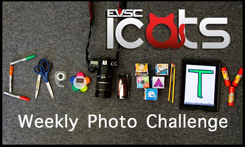 ICATS Weekly Photo Challenge