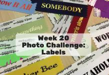 Week 20 Photo Challenge
